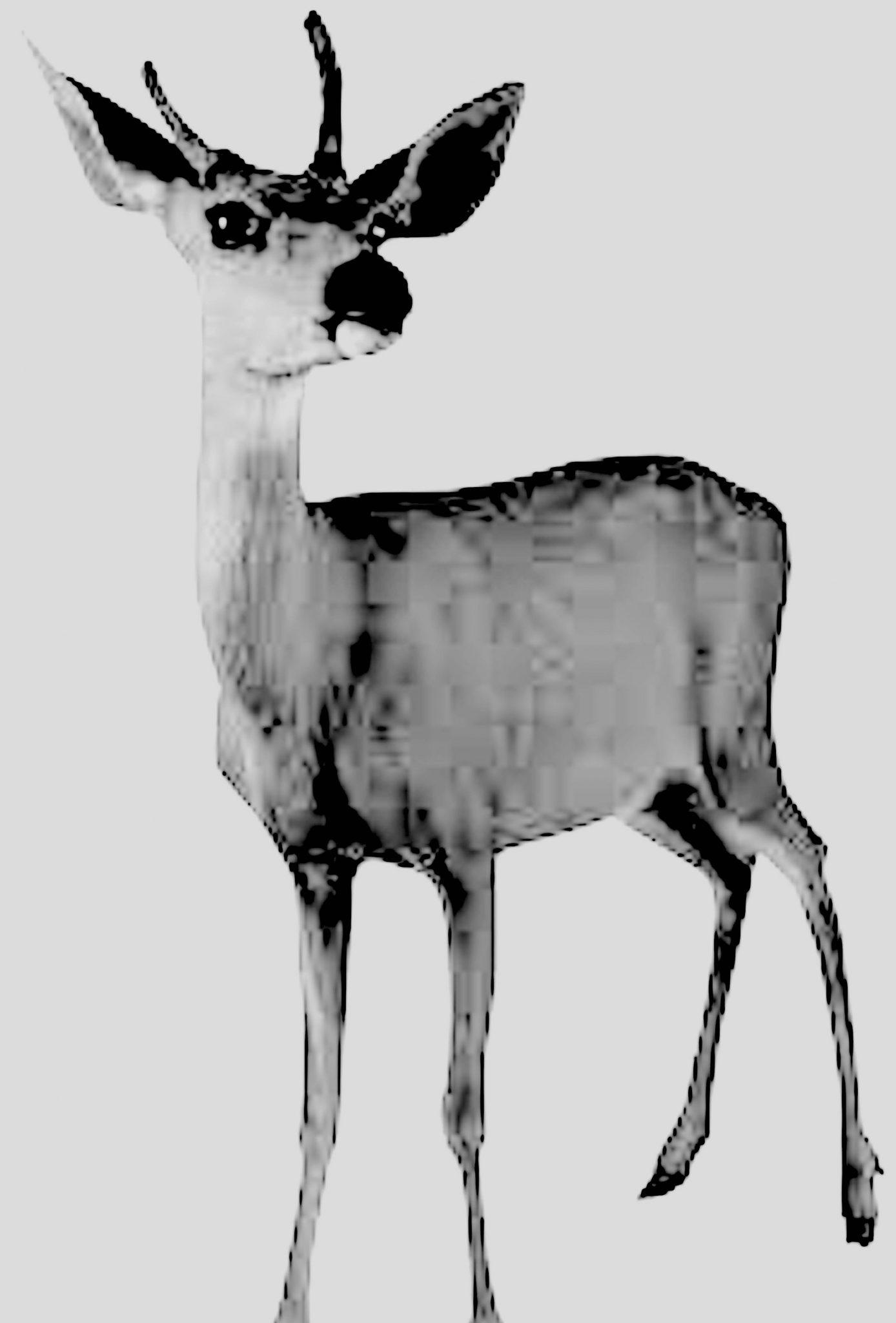Deer Park IV 𝑏𝑦 Dale Brett